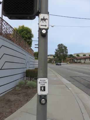 horse-cross-button