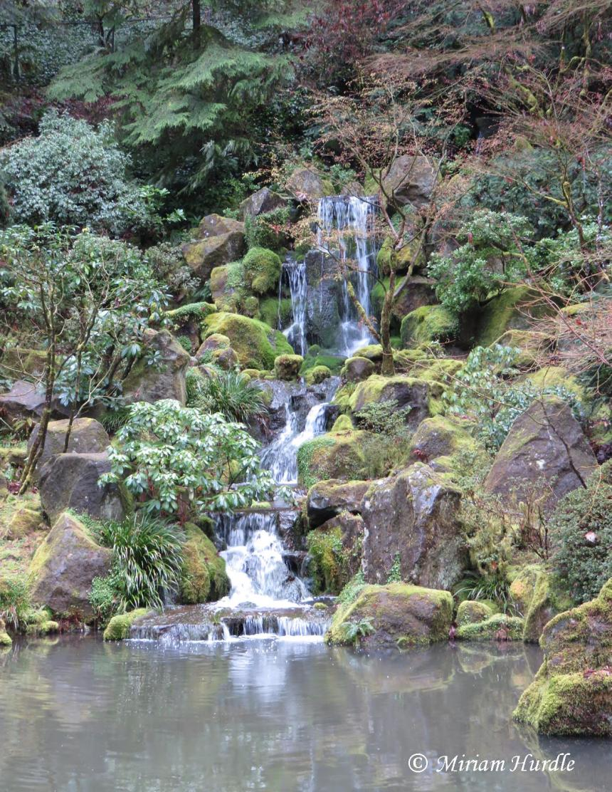 graceful-fall-japanese-garden-portland