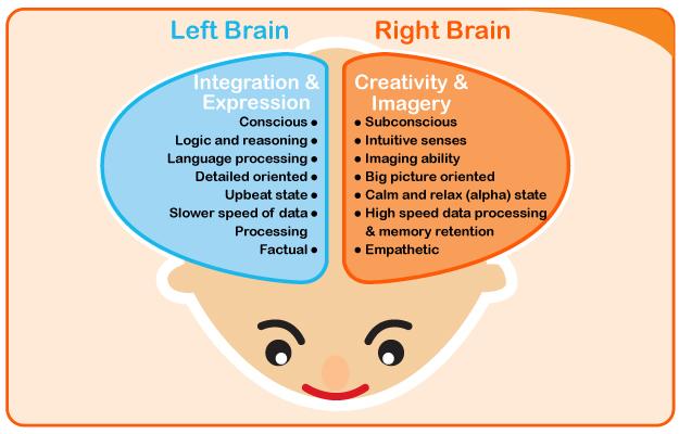 how-your-childs-brain-develope-heguru