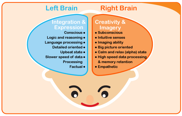 how-your-childs-brain-develope-heguru