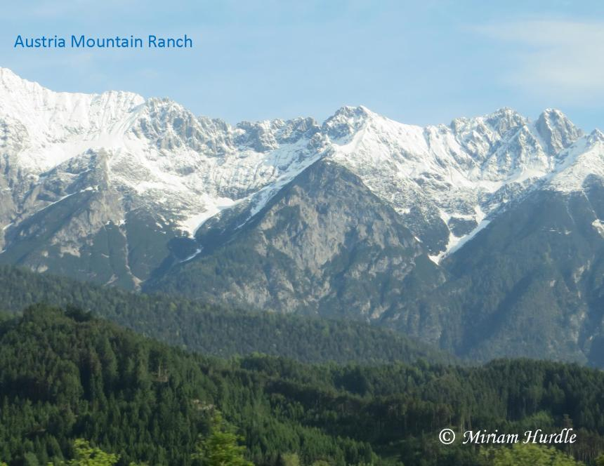mountan-ranch-1