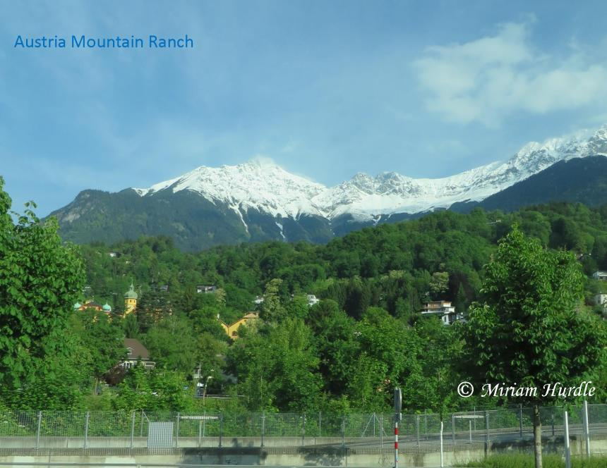 mountan-ranch-2