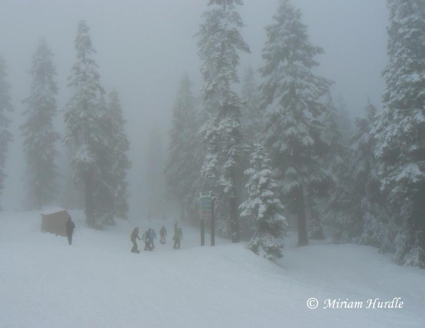 Fog in snow 2
