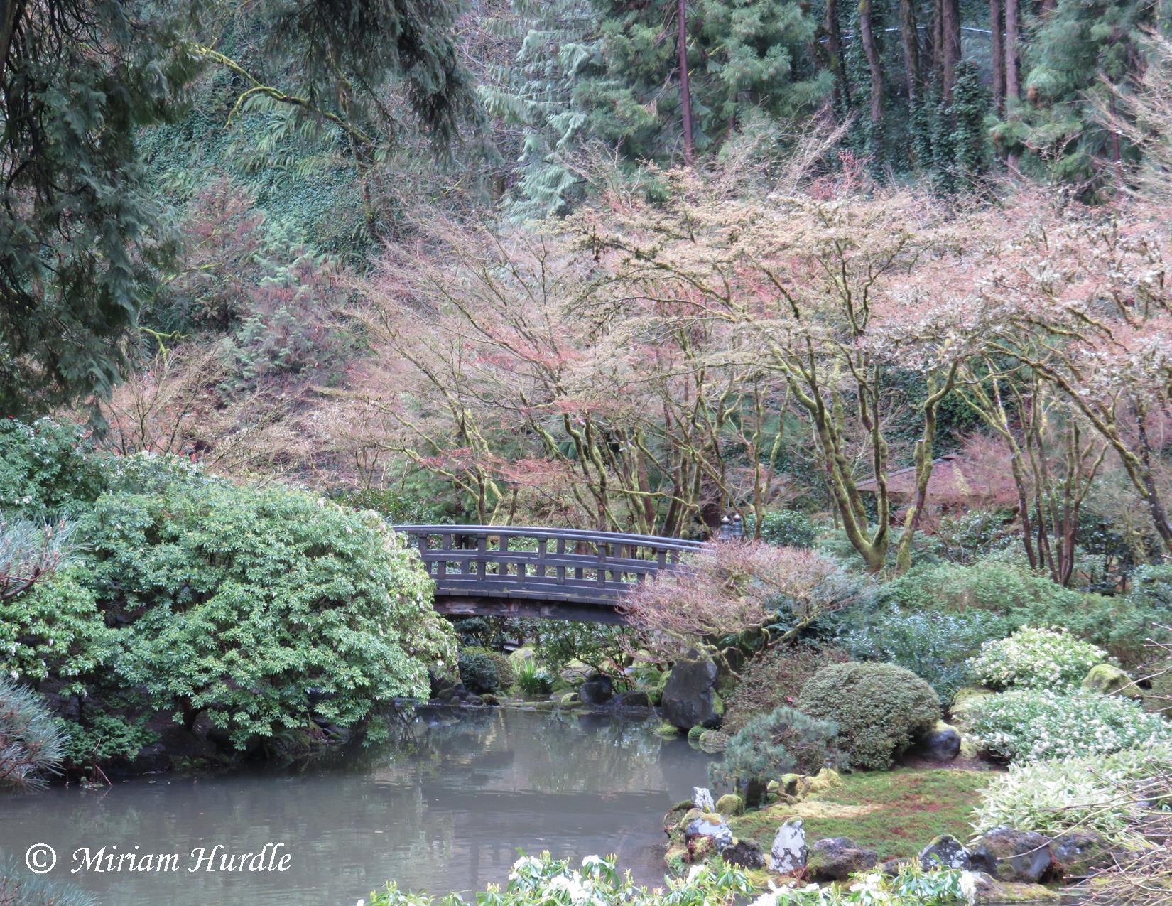 Japanes garden 1