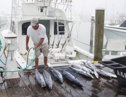 4 Key West fishing