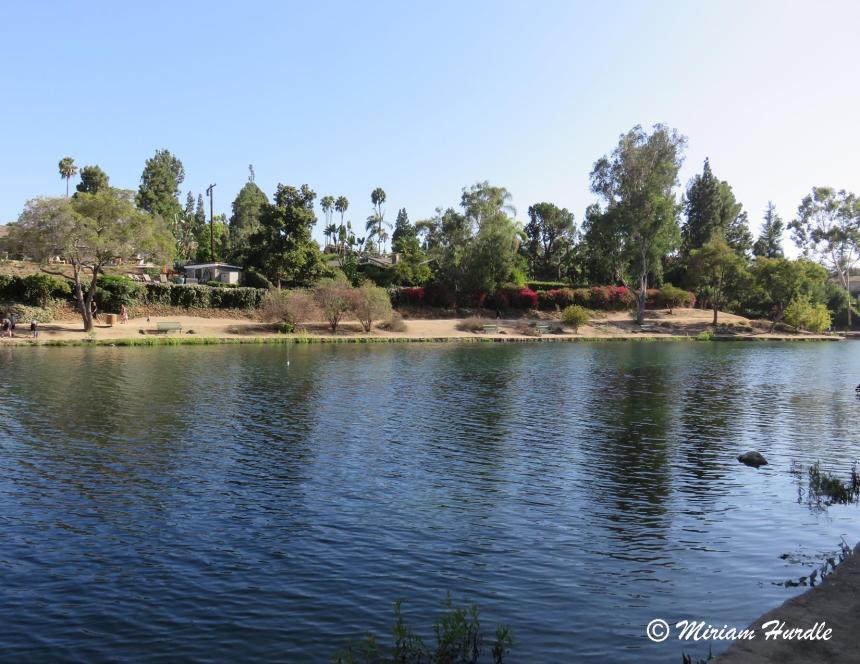 Laguna Lake 1