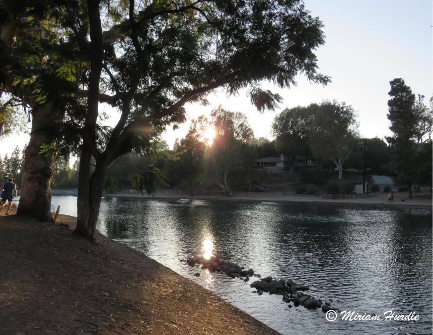 Laguna Lake 2