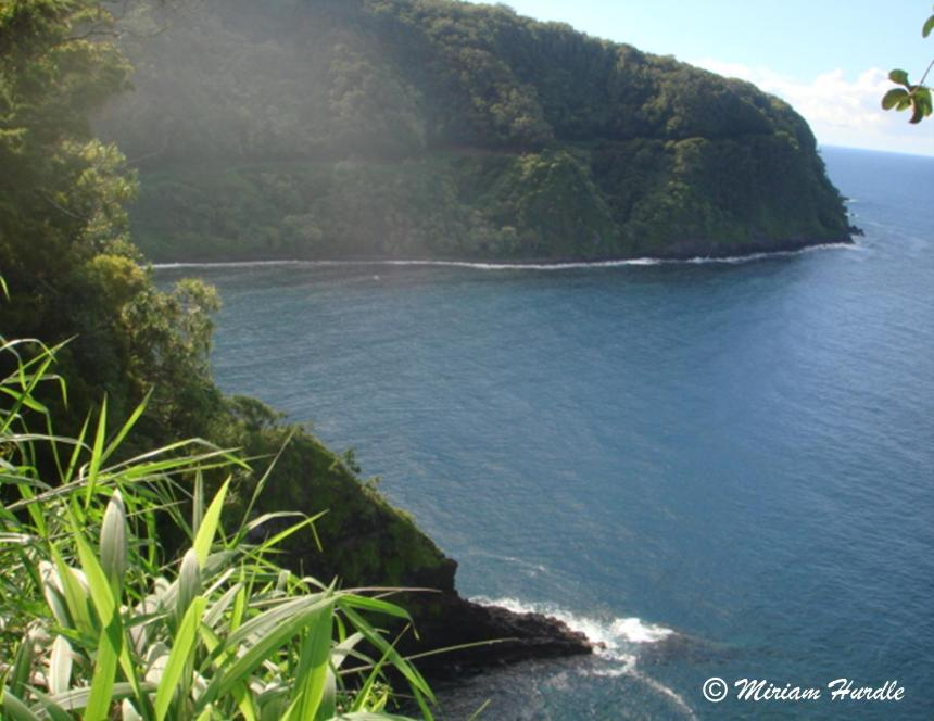 Road to Hana cliff 1
