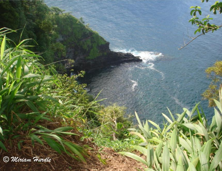 Road to Hana cliff 2