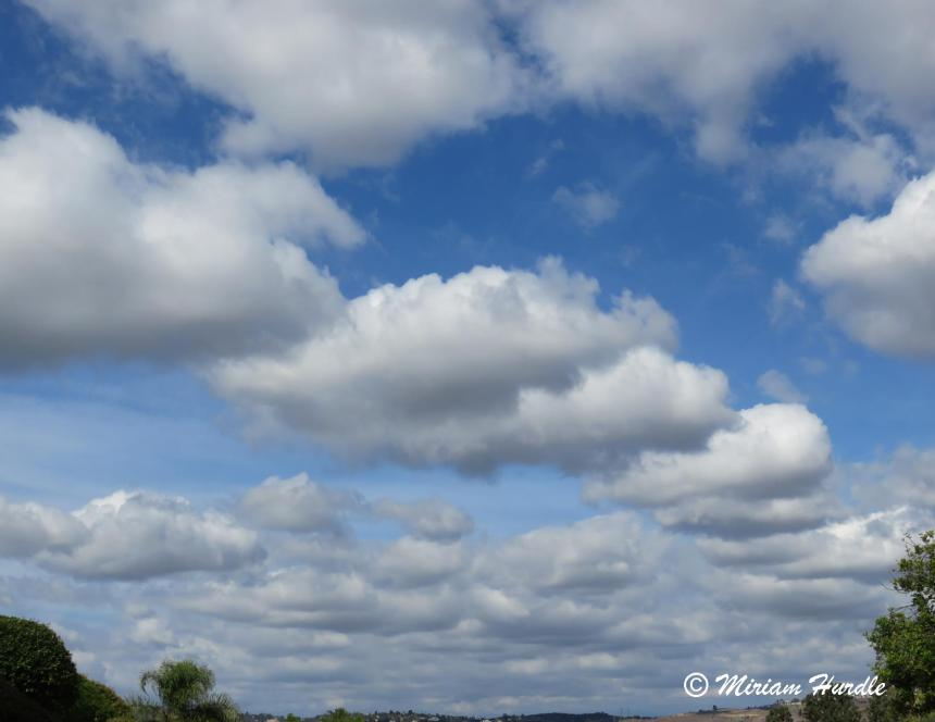 cloudy 1