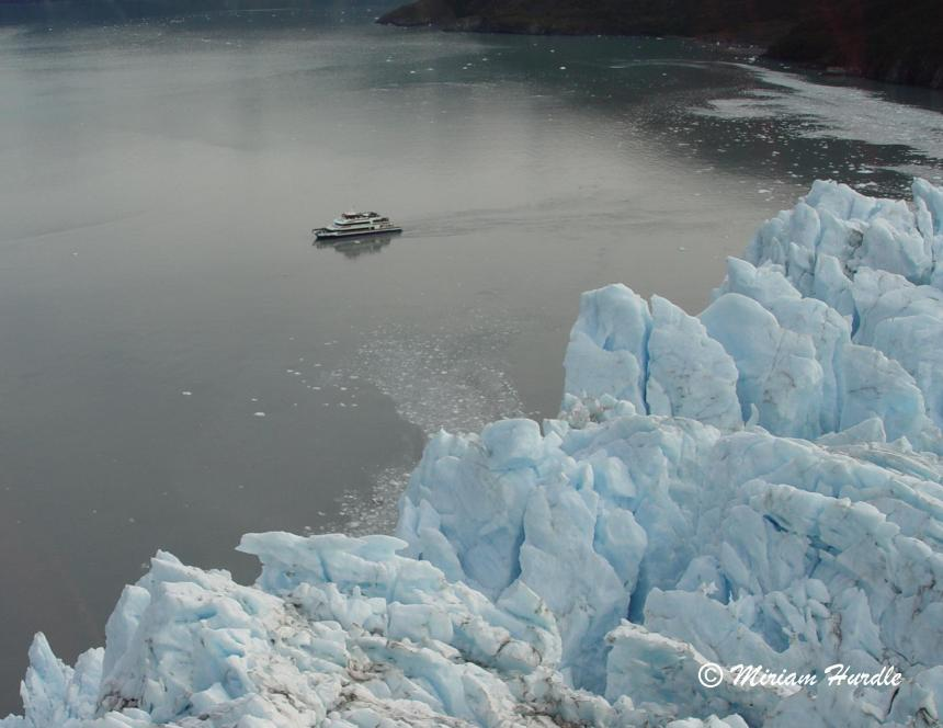 Jagged glacier 4