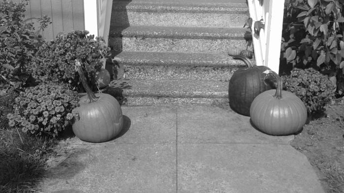 pumpkin (2)