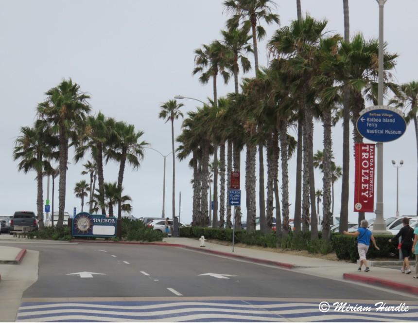 Newport beach 1