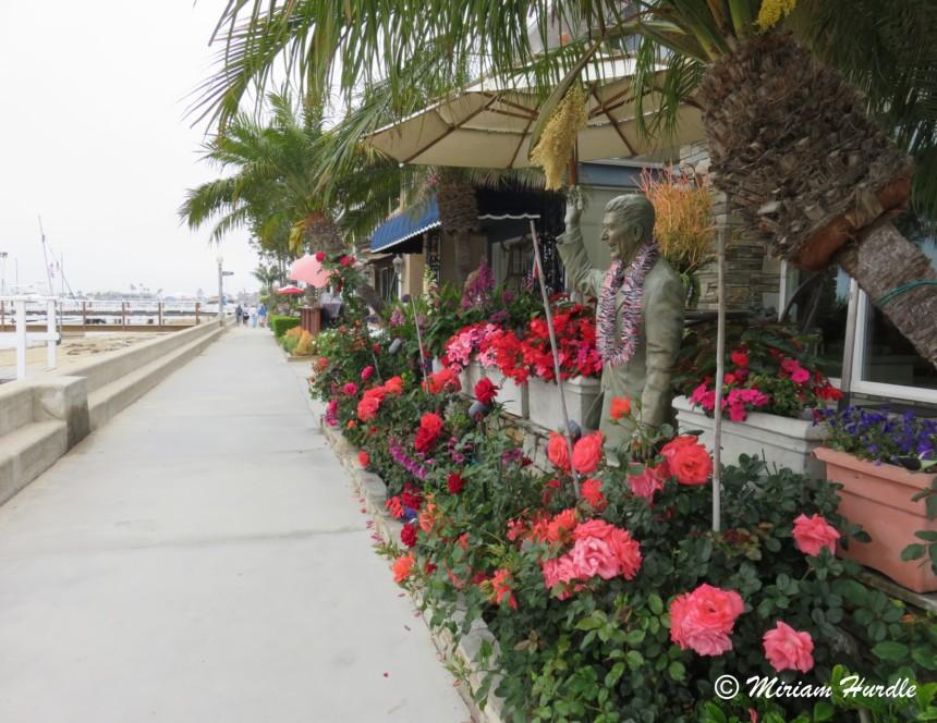 Newport beach 3