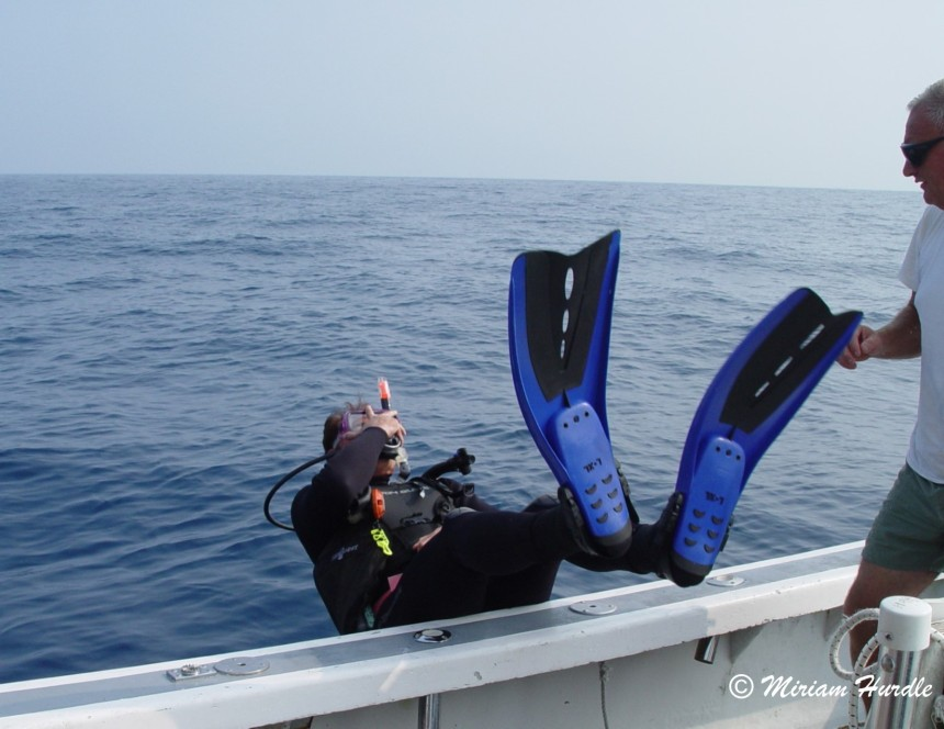 3.NC Diving 036 (2)a