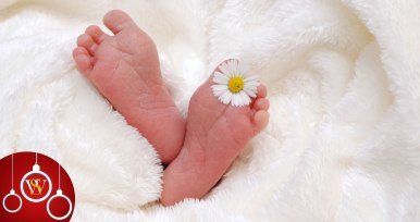 Beautiful Tiny Baby written by Miriam Hurdle at Spillwords.com