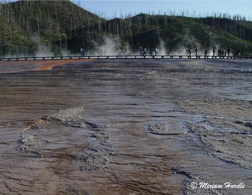 Mudpot, Yellowstone, U.S.