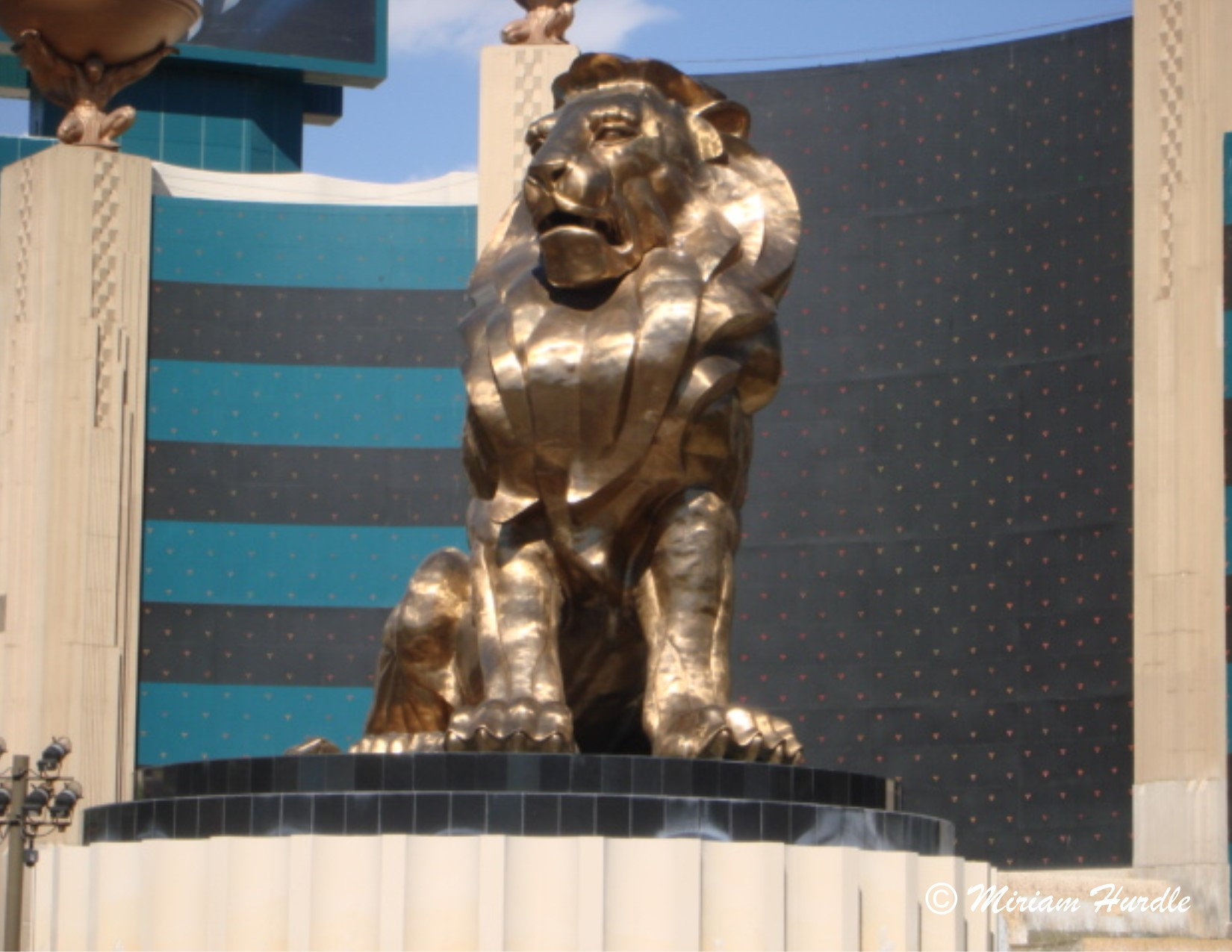 1.Las Vegas lion