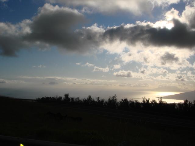 2.Maui 2011