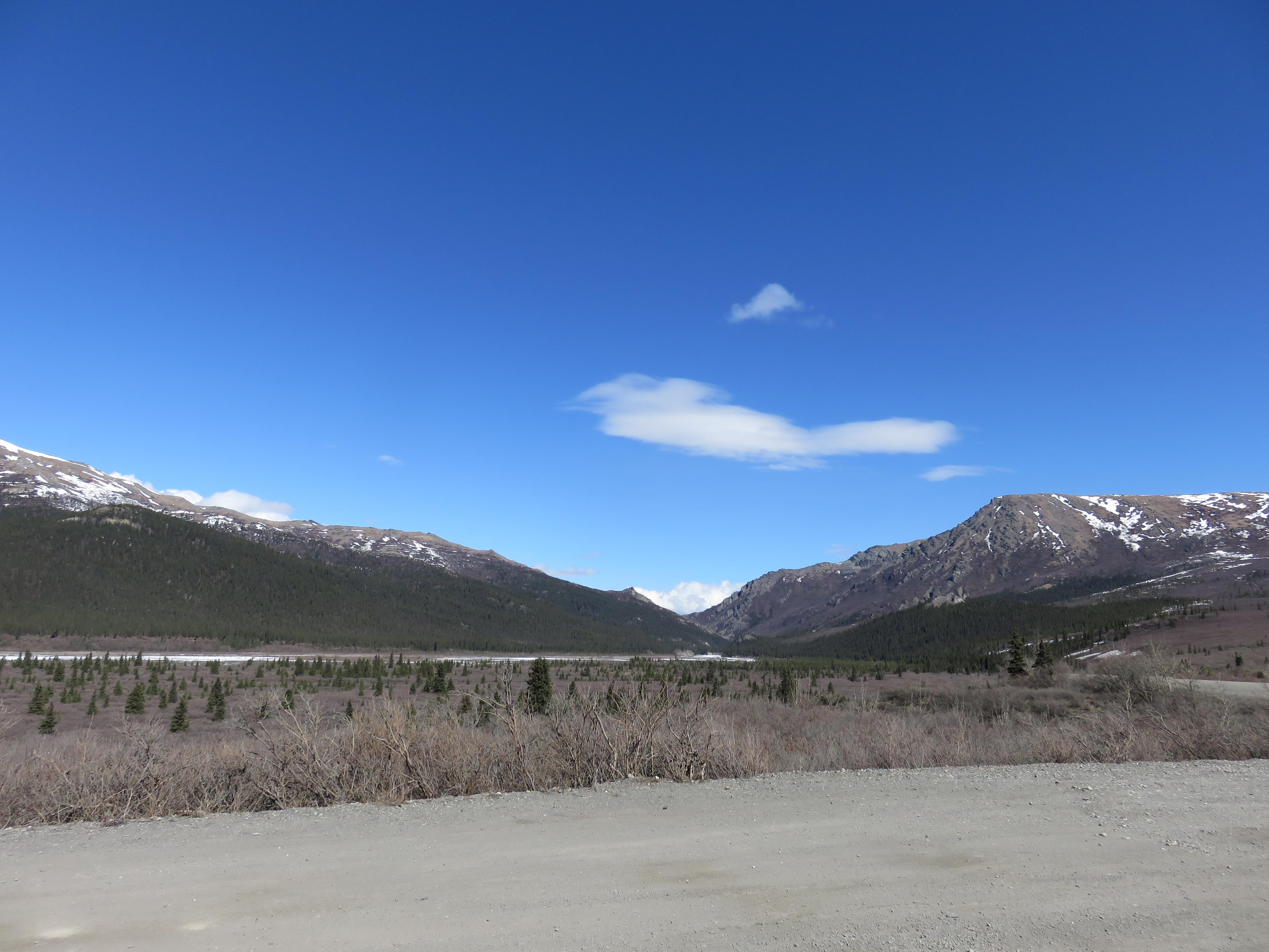 Alaska.Denali IMG_6710