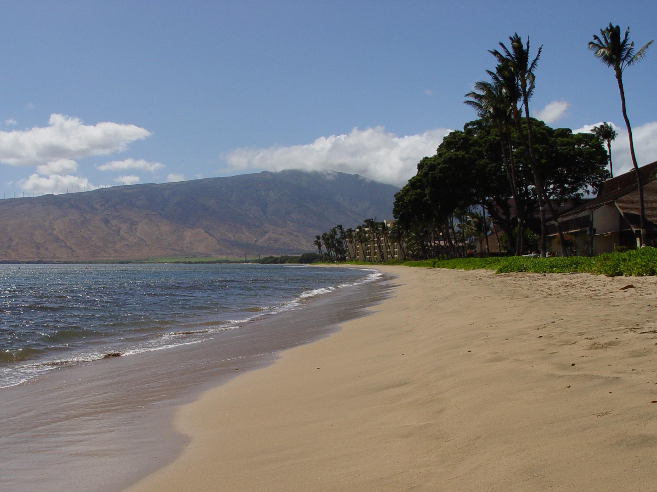 8.Beach by condo