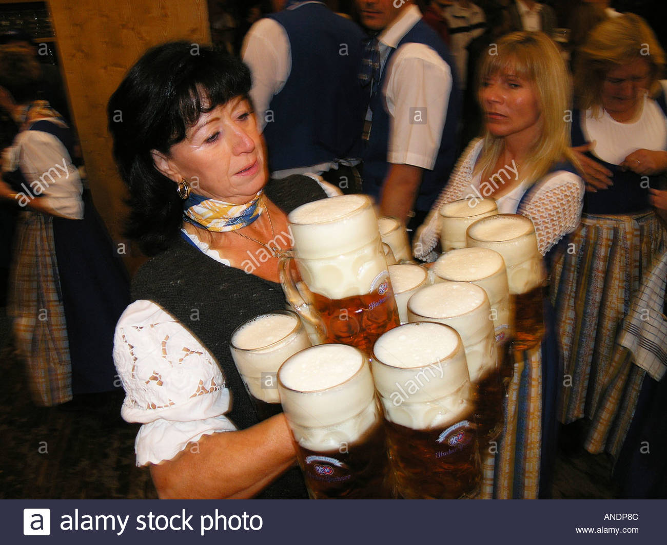 waitress-dressed-in-dirndl-serving-liter-glasses-of-beer-in-oktoberfest-ANDP8C